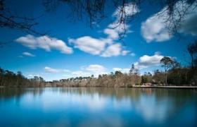 Langley Park image 1